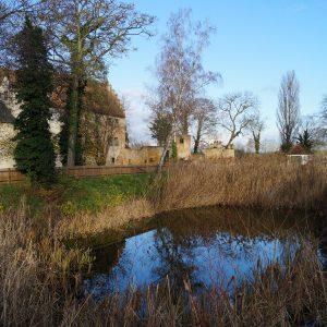 Schloss&Teich (2)